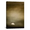 iCanvasArt 'Wild Moon l' by Dan Ballard Painting Print on Canvas