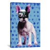 iCanvasArt Bulldog by Luz Graphics Graphic Art on Canvas in Blue