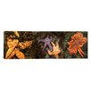 iCanvasArt Panoramic Sea Stars Photographic Print on Canvas
