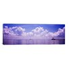 iCanvasArt Panoramic Sea with Sunshine Skyway Bridge in Gulf of Mexico, Florida Photographic Print on Canvas