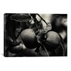 "iCanvasArt ""Three Persimmons in the Rain"" by Geoffrey Ansel Agrons Photographic Print on Canvas"