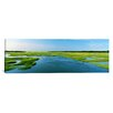 iCanvas Panoramic Sea Grass in the Sea, Atlantic Coast, Jacksonville, Florida Photographic Print on Canvas