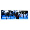 iCanvasArt Panoramic Duke Kahanamoku Statue, Waikiki Beach, Honolulu, Oahu, Hawaii Photographic Print on Canvas