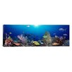 iCanvas Panoramic School of Fish Swimming in the Sea Photographic Print on Canvas