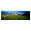 iCanvasArt Panoramic Aigle Castle, Musee de la Vigne Et Du Vin, Aigle, Vaud, Switzerland Photographic Print on Canvas