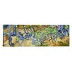 iCanvasArt 'Tree-Roots' Panoramic by Vincent Van Gogh Painting Print on Canvas