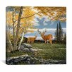 "iCanvas ""Woodland Meadows"" Canvas Wall Art by John Van Straalen"