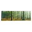 <strong>iCanvasArt</strong> Panoramic Woodlands Near Annweiler Germany Photographic Print on Canvas