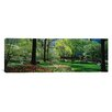 <strong>iCanvasArt</strong> Panoramic Trees in a Park, Central Park, Manhattan, New York City, New York State Photographic Print on Canvas