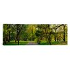iCanvas Panoramic Trees in a Park, Central Park, New York City, New York State Photographic Print on Canvas
