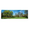 iCanvas Panoramic Tulips with Trees at Sherwood Gardens, Baltimore, Maryland Photographic Print on Canvas