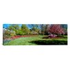 <strong>iCanvasArt</strong> Panoramic Tulips and Cherry Panoramic Trees in a Garden, Sherwood Gardens, Baltimore, Maryland Photographic Print on Canvas