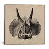 iCanvas Triceratops Skull Anatomy Canvas Wall Art