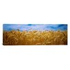 iCanvasArt Panoramic Wheat Crop Growing in a Field, Palouse Country, Washington State Photographic Print on Canvas