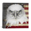 iCanvas Bald American Eagle Graphic Art on Canvas in Black / Red