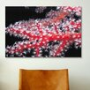 iCanvas Marine and Ocean Red Gorgonian Coral Photographic Print on Canvas