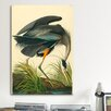 iCanvas 'Great Heron' by John James Audubon Painting Print on Canvas