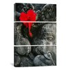 iCanvas Photography Ganesh Holy Hindu God Statue 3 Piece on Canvas Set