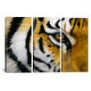 iCanvas Decorative Art Eye of The Tiger Lucie Bilodeau 3 Piece on Canvas Set