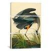 iCanvasArt John James Audubon Great Blue Heron 3 Piece on Canvas Set