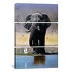 iCanvas Decorative Art Elephant Egret and Carmines Pip McGarry 3 Piece on Canvas Set