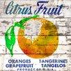 Jen Lee Art Citrus Fruit Barn Siding Graphic Art Plaque