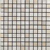 <strong>Samson Tile</strong> Travertini Polished Mosaic Floor and Wall Tile in Grigio/Cream