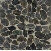 Bedrosians Hemisphere Sliced Pebble Stone Polished Mosaic Tile in Panther Black
