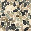 Bedrosians Hemisphere Random Sized Sliced Pebble Stone Glazed Mosaic Tile in Malaga Bay