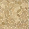 Bedrosians Hemisphere Sliced Pebble Stone Glazed Mosaic Tile in Antigua