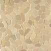 Bedrosians Hemisphere Random Sized Sliced Pebble Stone Mosaic Tile in Antigua
