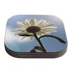 KESS InHouse Daisy Bottom by Angie Turner Coaster (Set of 4)