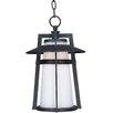 Maxim Lighting Calistoga EE 1-Light Outdoor Hanging