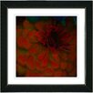 "Studio Works Modern ""Red Dahlia"" by Zhee Singer Framed Fine Art Giclee Painting Print"
