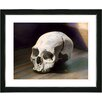 "Studio Works Modern ""Scull"" by Mia Singer Framed Fine Art Giclee Photographic Painting Print"