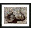 "Studio Works Modern ""Garlic - Beige"" by Zhee Singer Framed Fine Art Giclee Painting Print"