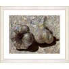 "Studio Works Modern ""Garlic - Beige"" by Zhee Singer Framed Fine Art Giclee Print"