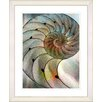 "Studio Works Modern ""Sea Cambrian"" by Zhee Singer Framed Fine Art Giclee Painting Print"