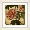 Studio Works Modern Vintage Botanical No. 49A by Zhee Singer Framed Giclee Print Fine Wall Art