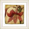Studio Works Modern Vintage Botanical No. 01A by Zhee Singer Framed Giclee Print Fine Wall Art