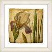 Studio Works Modern Vintage Botanical No. 42A by Zhee Singer Framed Giclee Print Fine Wall Art