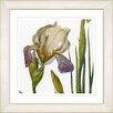 Studio Works Modern Vintage Botanical No. 42W by Zhee Singer Framed Giclee Print Fine Wall Art