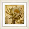 Studio Works Modern Vintage Botanical No 07A by Zhee Singer Framed Giclee Print Fine Wall Art