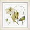 Studio Works Modern Vintage Botanical No. 29W by Zhee Singer Framed Giclee Print Fine Wall Art