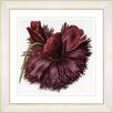 Studio Works Modern Vintage Botanical No. 51W by Zhee Singer Framed Giclee Print Fine Wall Art