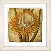 Studio Works Modern Vintage Botanical No. 15A by Zhee Singer Framed Giclee Print Fine Wall Art