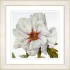 Studio Works Modern Vintage Botanical No. 52W by Zhee Singer Framed Giclee Print Fine Wall Art