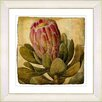 Studio Works Modern Vintage Botanical No. 57A by Zhee Singer Framed Giclee Print Fine Wall Art