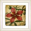 Studio Works Modern Vintage Botanical No. 22A by Zhee Singer Framed Giclee Print Fine Wall Art