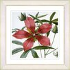 Studio Works Modern Vintage Botanical No. 22W by Zhee Singer Framed Giclee Print Fine Wall Art